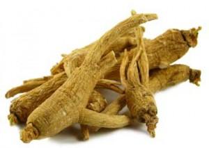 Raiz de Ginseng, um entre os mais conhecidos alimentos afrodisíacos